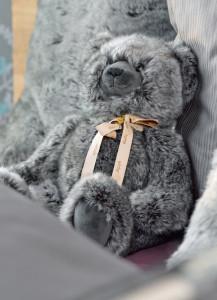 TeddyTimberwolf-744x1030